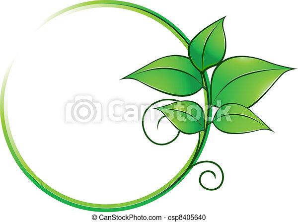 świeży, ułożyć, zielone listowie - csp8405640