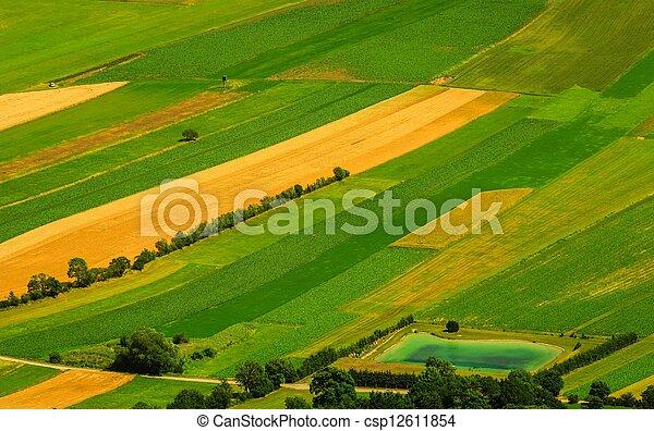 antena, pola, zielony, prospekt, żniwa, przed - csp12611854