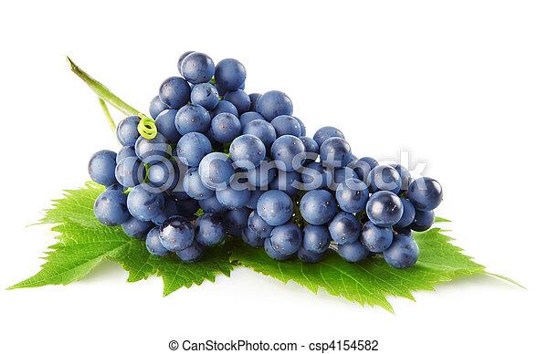 błękitny, grape odchodzi, odizolowany, owoc, zielony - csp4154582
