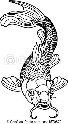 czarnoskóry, fish, karp, koi, biały - csp1570879