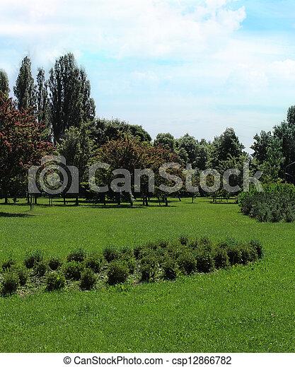 czas, park, wiosna - csp12866782