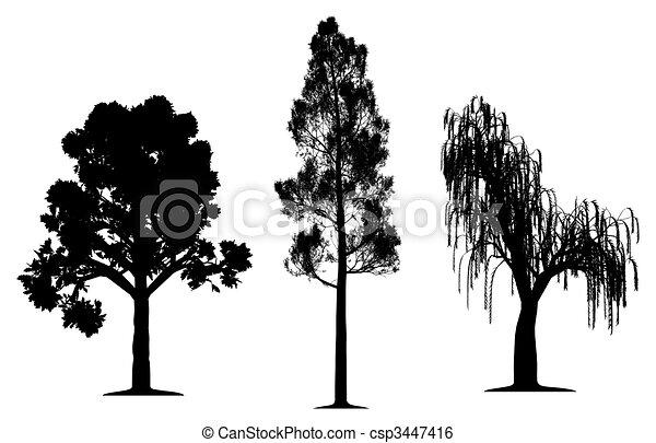 dąb, wierzbowe drzewo, sosna las, płaczący - csp3447416