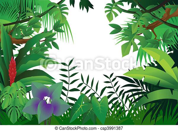 dżungla, tło - csp3991387