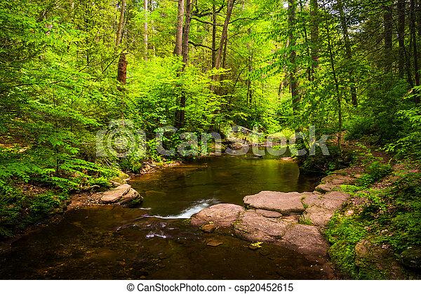dolina górska, pennsylva, potok, soczysty, park, stan, las, ricketts - csp20452615
