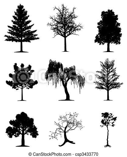drzewa, zbiór - csp3433770