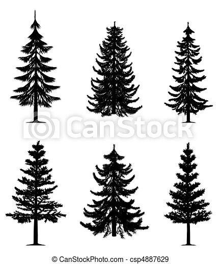 drzewa, zbiór, sosna - csp4887629