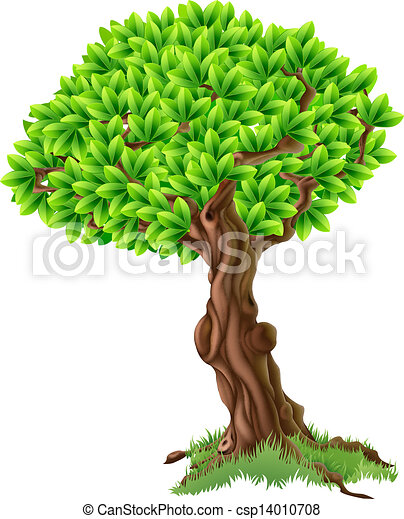 drzewo, ilustracja - csp14010708