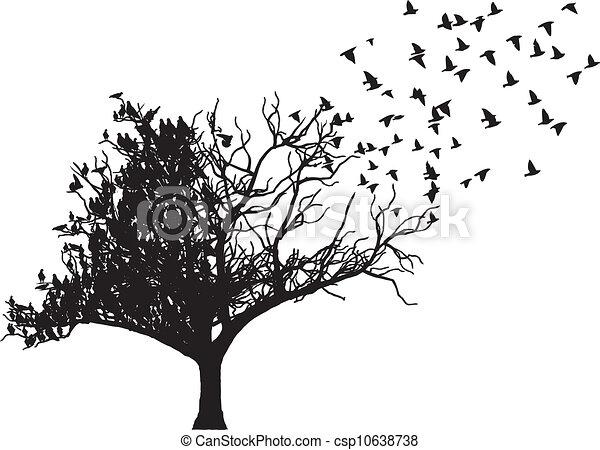 drzewo, wektor, sztuka, ptak - csp10638738