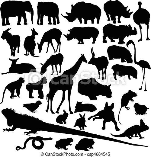 dziki, sylwetka, wektor, zwierzę - csp4684545