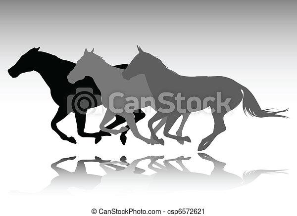 dzikie konie, wyścigi - csp6572621