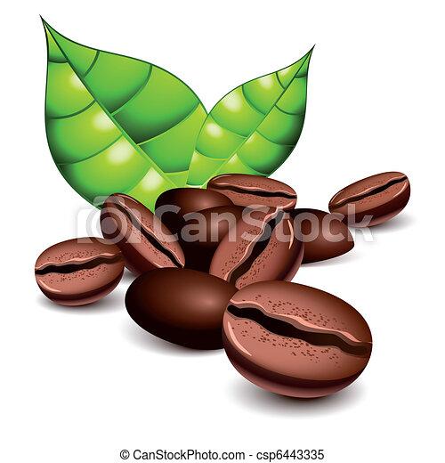 fasole kawy, liście - csp6443335