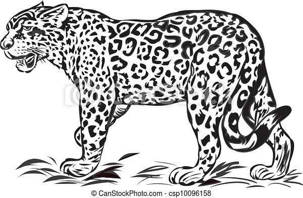 jaguar, dziki - csp10096158