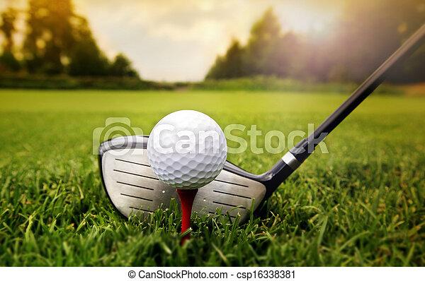klub, piłka, golf, trawa - csp16338381