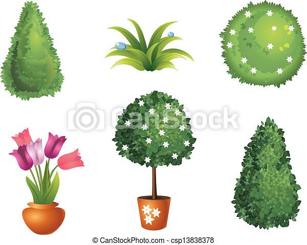 komplet, ogród, rośliny - csp13838378
