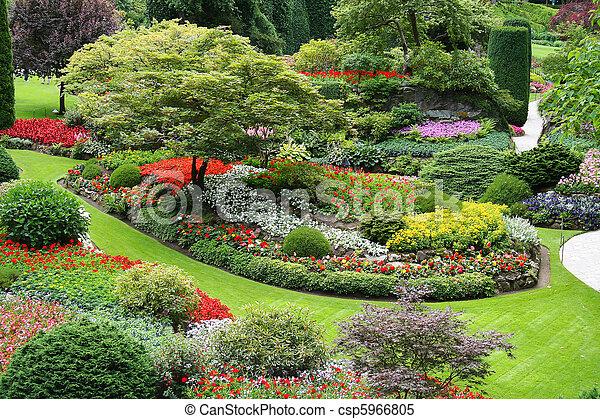 kwiat ogród - csp5966805