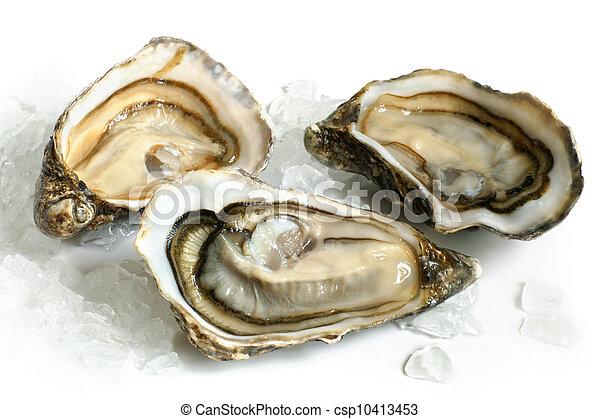 lód, ostrygi, surowy - csp10413453