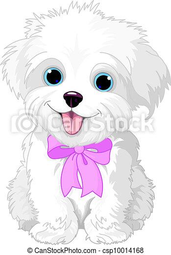 lap-dog, biały - csp10014168
