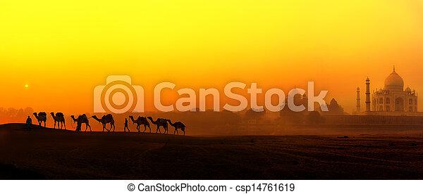 mahal, pałac, india., tajmahal, panoramiczny, sylwetka, indianin, zachód słońca, taj, wielbłądy, krajobraz, prospekt - csp14761619