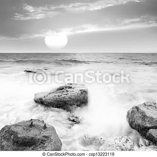 motyw morski - csp13223119