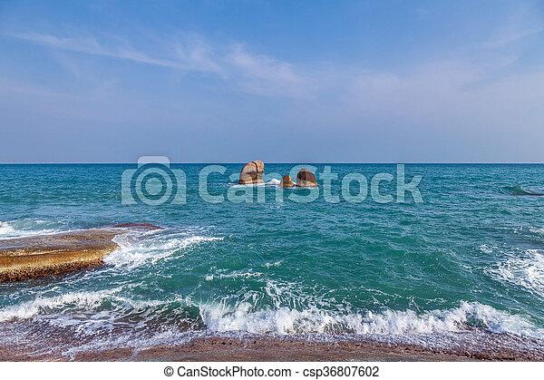 motyw morski - csp36807602