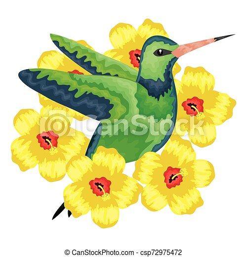 odrobina, wektor, kwiaty, ilustracja, hummingbird - csp72975472