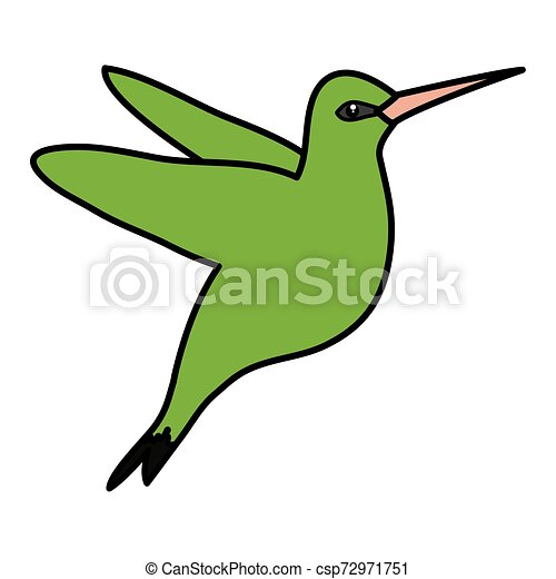 odrobina, wektor, kwiaty, ilustracja, hummingbird - csp72971751
