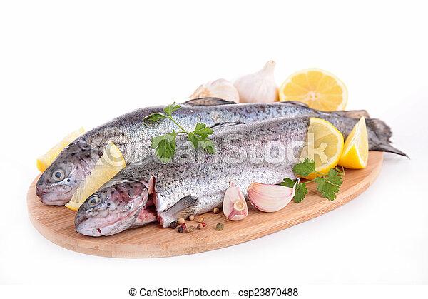 otrzyjcie skórę rybę - csp23870488