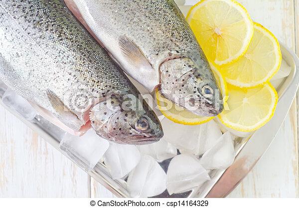 otrzyjcie skórę rybę - csp14164329