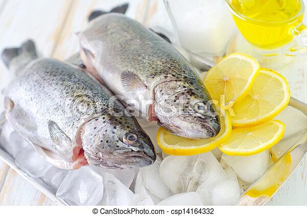 otrzyjcie skórę rybę - csp14164332