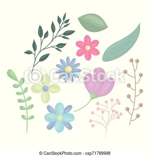 ozdoba, kwiaty, wektor, liście, ilustracja - csp71789998