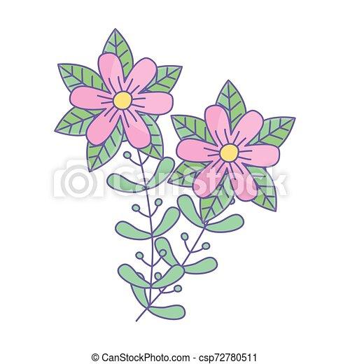 ozdoba, odizolowany, ilustracja, wektor, projektować, kwiaty - csp72780511
