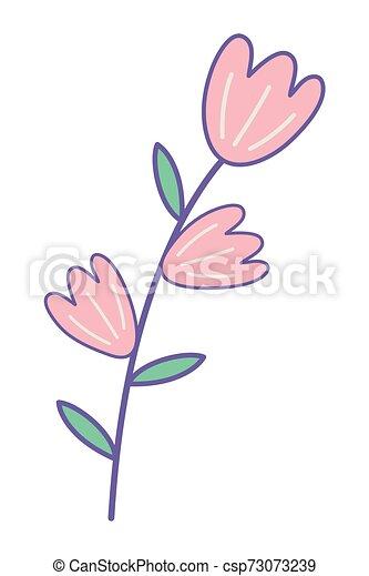 ozdoba, odizolowany, ilustracja, wektor, projektować, kwiaty - csp73073239