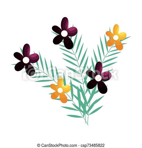 ozdoba, odizolowany, projektować, kwiaty, ilustracja, wektor - csp73485822