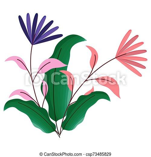 ozdoba, odizolowany, projektować, kwiaty, ilustracja, wektor - csp73485829
