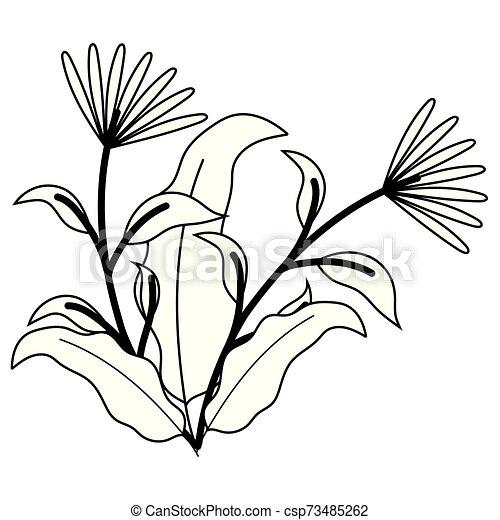 ozdoba, odizolowany, projektować, kwiaty, ilustracja, wektor - csp73485262