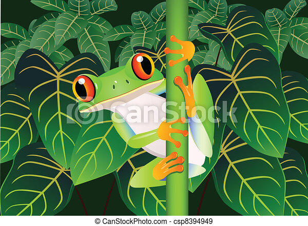 piękny, żaba - csp8394949