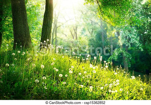 piękny, krajobraz., wiosna, nature., drzewa, zielona trawa - csp15362852
