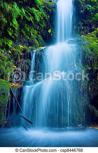 piękny, wodospad, soczysty - csp8446768