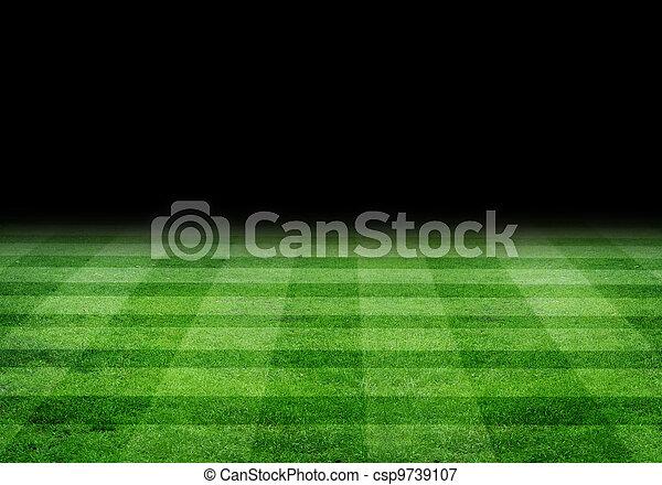 pole, piłka nożna - csp9739107