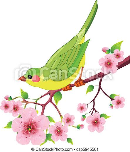 ptak, wiosna - csp5945561