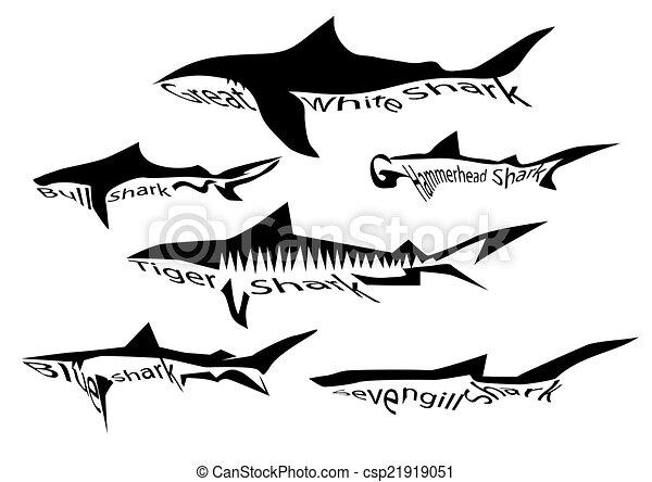 rekin, gatunek - csp21919051