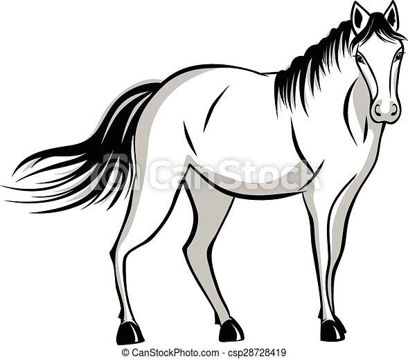 reputacja, cicho, koń - csp28728419