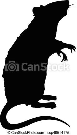 reputacja, szczur, sylwetka - csp48514175