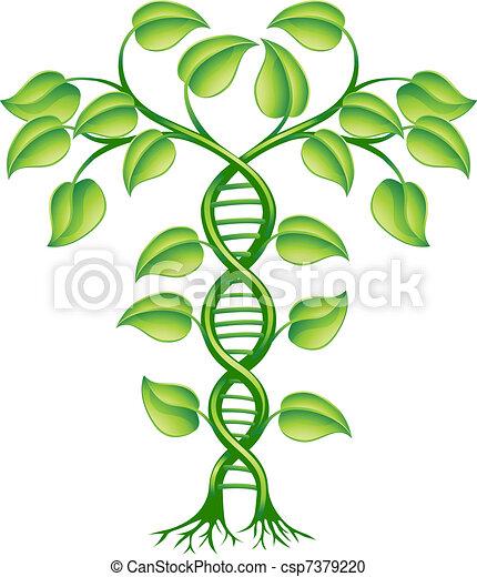 roślina, pojęcie, dna - csp7379220