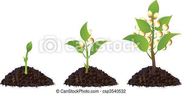 rośliny, pieniądze, życie, proces - csp3540532