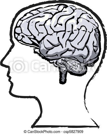 rys, grunge, pamięć, mózg, ludzki, szorstki - csp5827909