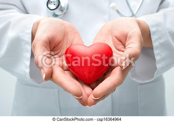 serce, dzierżawa, doktor - csp16364964