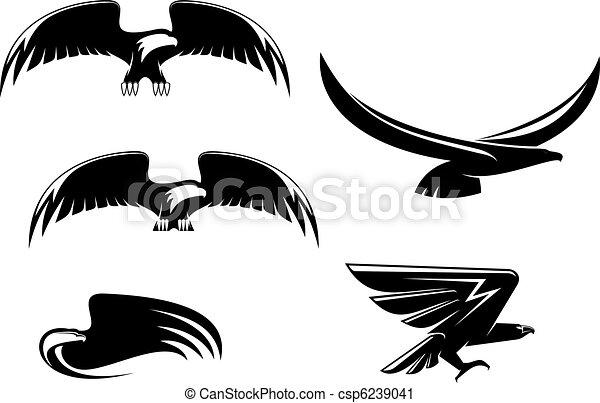 symbolika, heraldyka, orzeł, capstrzyk - csp6239041