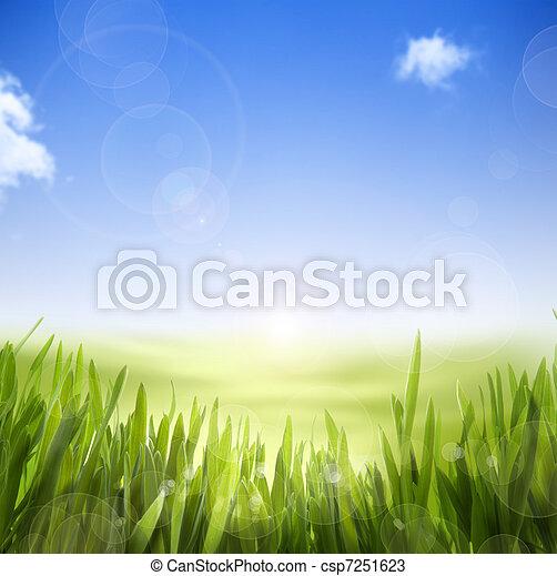 sztuka, natura, wiosna, abstrakcyjny, niebo, tło, trawa - csp7251623