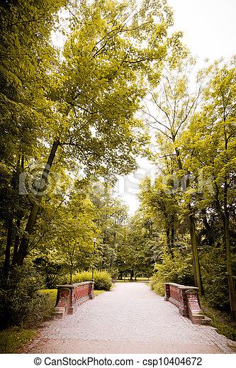 wiosna, park, czas - csp10404672